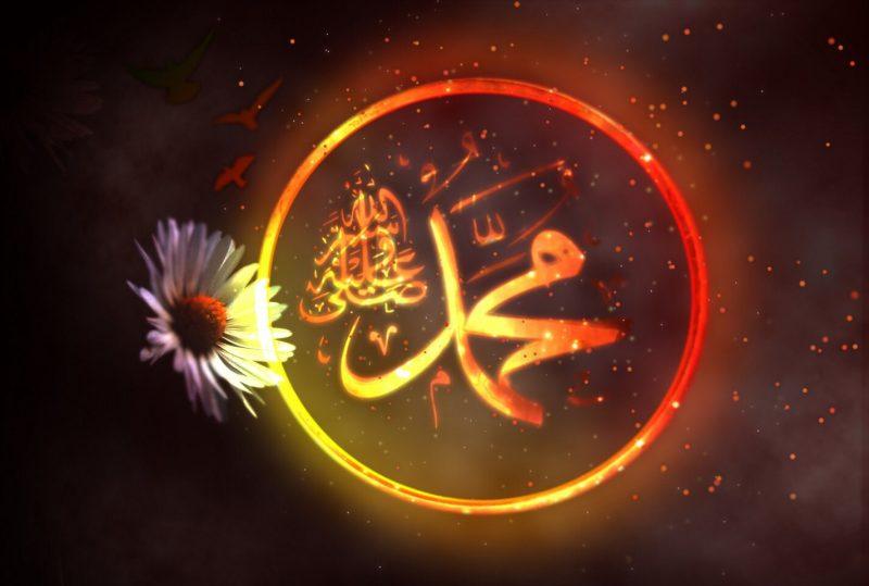 Mehdi (a.s.)'ın Peygamber Efendimize (s.a.v.) Olan Sevgisi
