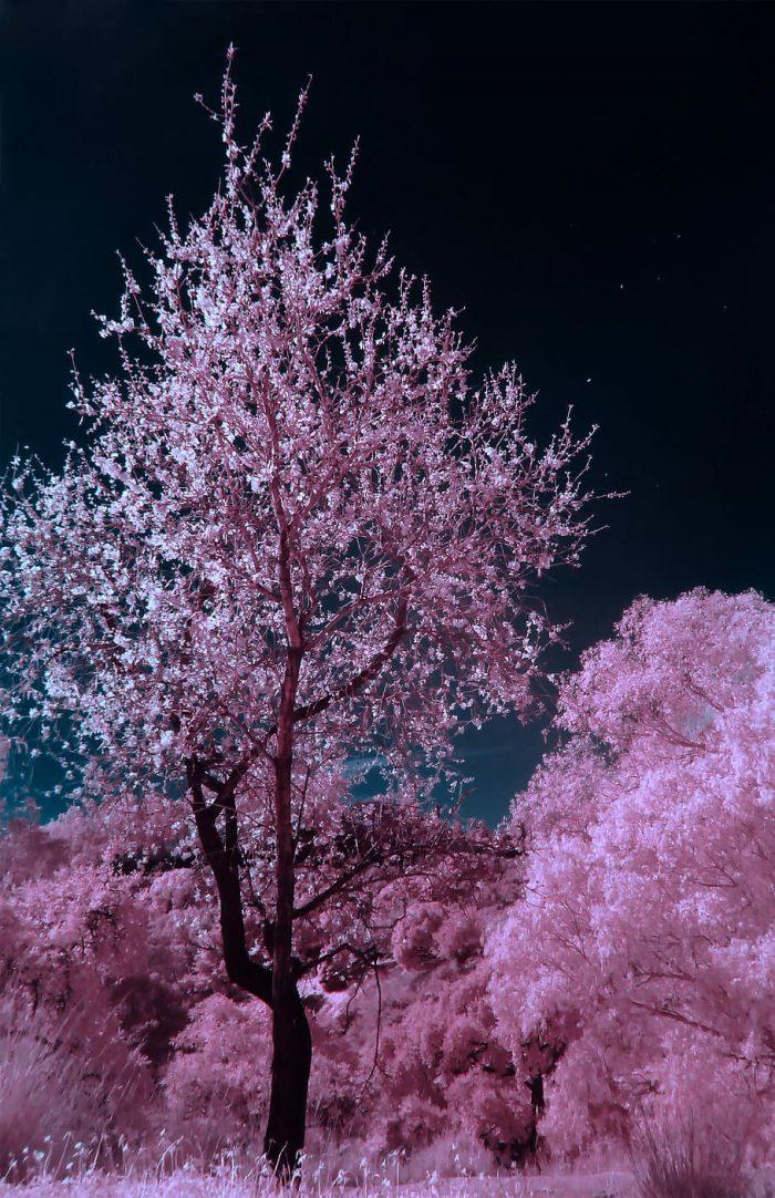 Cennet ve Cehennem Nerededir?
