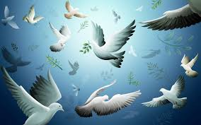 Hz. Ahmed'in (as) Barış Çağrısı