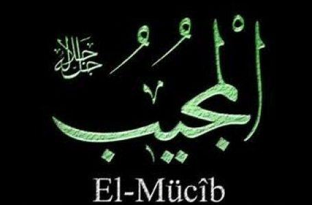"""""""Mücib"""" sıfatıyla Allah'ın varlığının ispatı"""